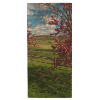 Spring Day In Rivercut Wood USB Flash Drive