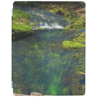 Spring Deep iPad Cover