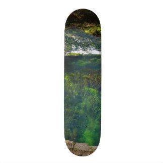 Spring Deep Skateboard Deck