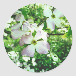 Spring Dogwood Round Sticker