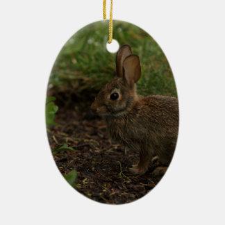 Spring/Easter: Chick, Rabbit Ceramic Ornament
