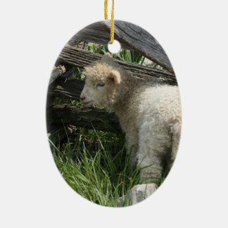 Spring/Easter: Two lambs same grass, One by fence Ceramic Oval Ornament