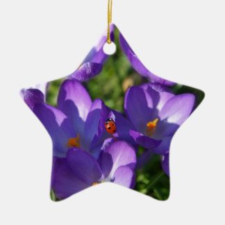 Spring flowers and ladybug ceramic ornament