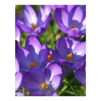 Spring flowers and ladybug letterhead