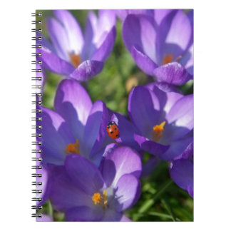 Spring flowers and ladybug notebook