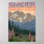 Spring Flowers - Glacier National Park, MT Posters
