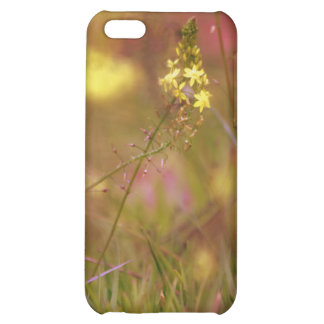 Spring Flowers iPhone 5 Matte Phone Case iPhone 5C Covers