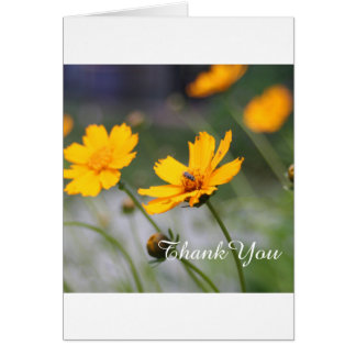 Spring Flowers, Thank You | Photo Card