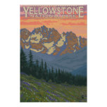 Spring Flowers - Yellowstone National Park Posters