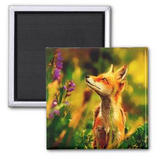 Spring Fox Magnet