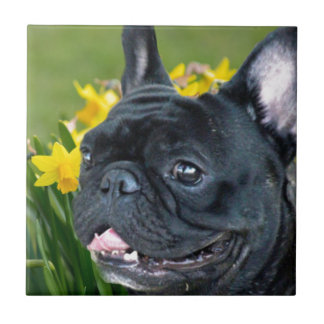 Spring French Bulldog Dog Decorative Tile