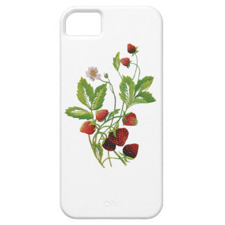 Spring Fresh Strawberries Embroidery iPhone 5 Cover