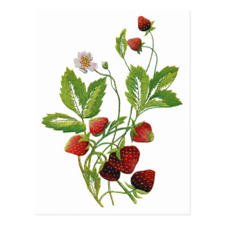 Spring Fresh Strawberries Embroidery Postcard