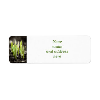 Spring green shoots return address label