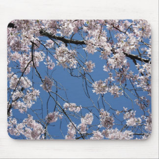 Spring has Sprung Mousepad