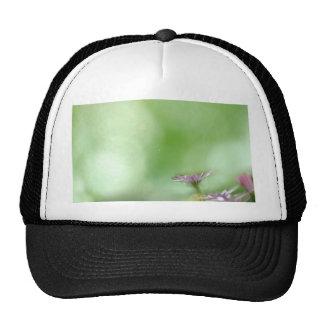Spring Trucker Hat