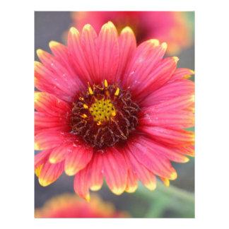 Spring in Bloom Letterhead