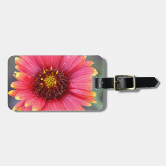 Spring in Bloom Luggage Tag