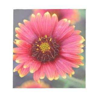 Spring in Bloom Notepads