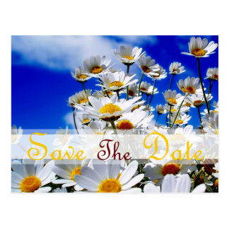 Spring IN blue sky for Save the Date - Customized Postcard