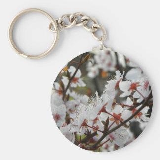 Spring in Canberra Basic Round Button Keychain