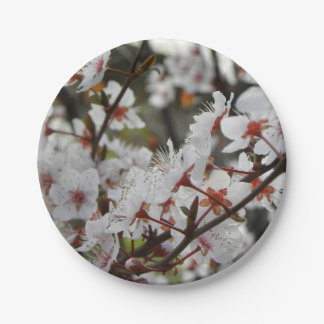 Spring in Canberra 7 Inch Paper Plate