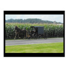 ~ Spring in Lancaster County ~ 19 Postcard