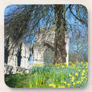Spring in Museum Gardens Coaster