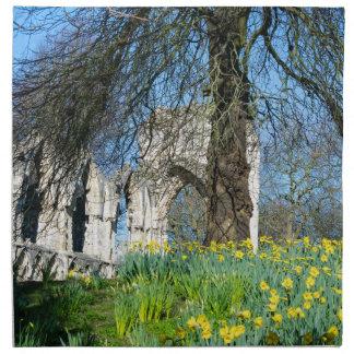 Spring in Museum Gardens Napkin