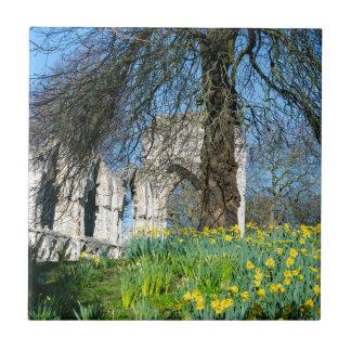 Spring in Museum Gardens Tile
