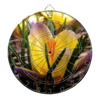 Spring in the air, Crocus are blooming! Dartboard