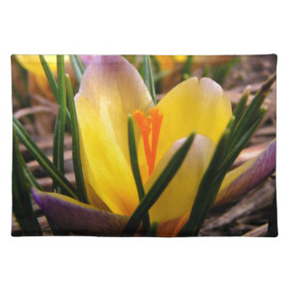 Spring in the air, Crocus are blooming! Placemat