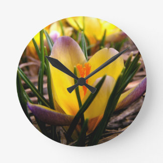 Spring in the air, Crocus are blooming! Round Clock