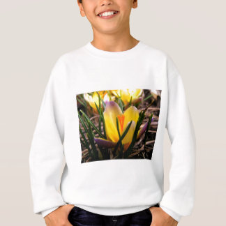 Spring in the air, Crocus are blooming! Sweatshirt