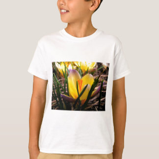 Spring in the air, Crocus are blooming! T-Shirt