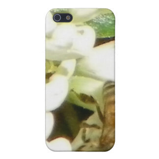 Spring In The Garden Case iPhone 5 Cases