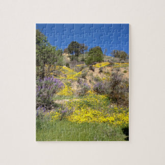 Spring in the hills jigsaw puzzle
