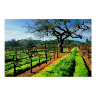 Spring in the Vineyard Poster