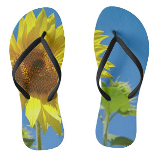 Spring is here! - Springtime sunflowers Flip Flops