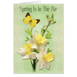 Spring Is In The Air Card