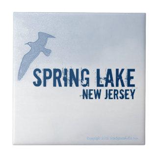 SPRING LAKE NEW JERSEY (NJ) Ceramic Tile