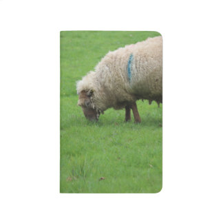 Spring Lamb and Sheep Journal