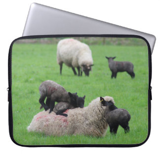Spring Lamb and Sheep Laptop Sleeves