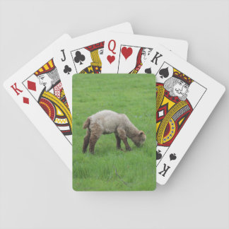 Spring Lamb and Sheep Playing Cards