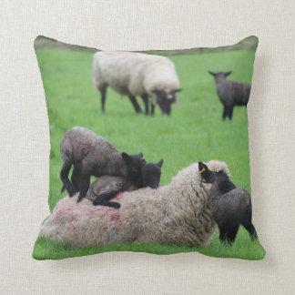 Spring Lamb and Sheep Throw Pillow