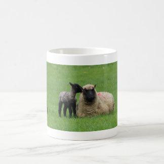 Spring Lambs Coffee Mug