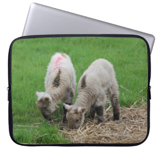 Spring Lambs Laptop Computer Sleeves