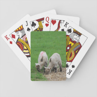 Spring Lambs Playing Cards