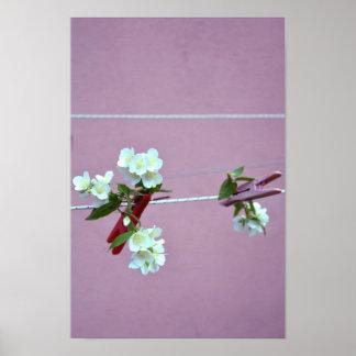 Spring Line Poster