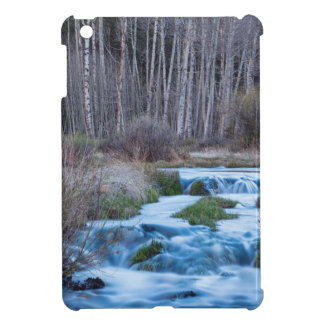 Spring Melt Off Flowing Down From Bonanza iPad Mini Cover
